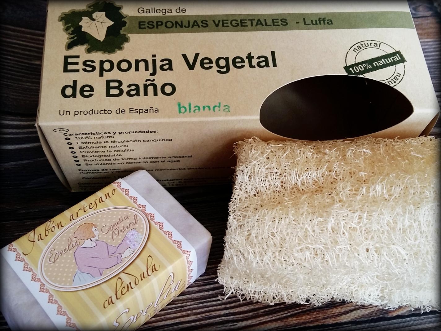 Alonso de la torre cosm tica natural nuevos productos - Esponja natural vegetal ...