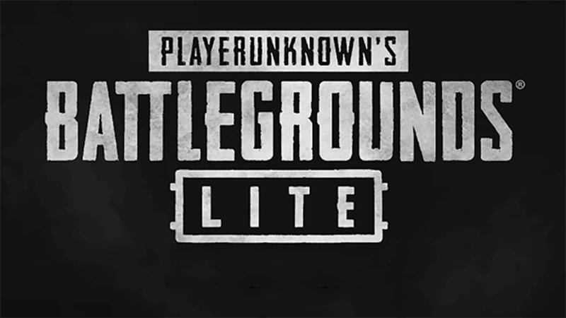 PUBG Lite has been a great alternative for low-end PCs
