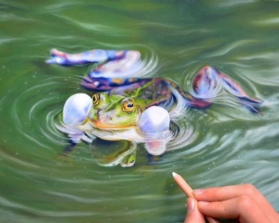 02-Frog-Swimming-Julia-M-www-designstack-co