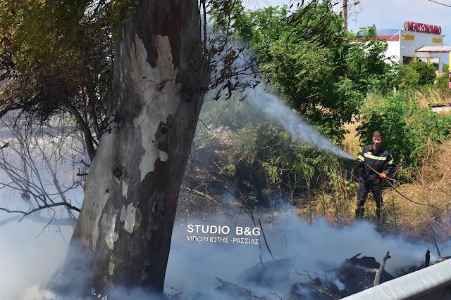 Αργολίδα: Φωτιά στην περιοχή της Αρχαίας Ασίνης
