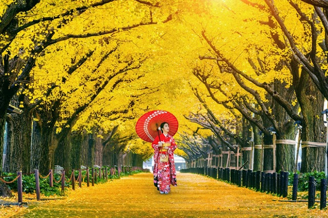 Traveling a different Japan on a new tourist route in autumn