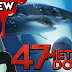 47 METERS DOWN (2017) 💀 Spoiler-Free Horror Movie Review