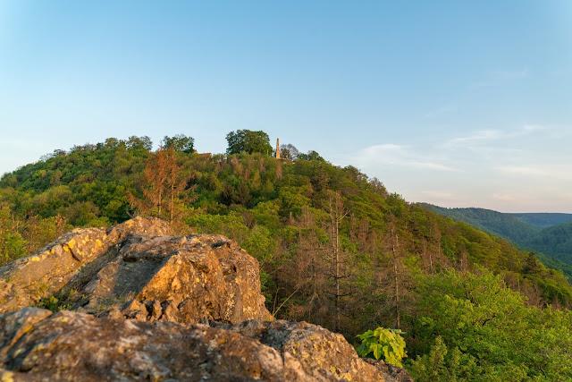 Sonnenuntergang am kleinen Burgberg  Wandern in Bad Harzburg  Wanderung Harz  Kurpark und Burgberg Bad Harzburg 14