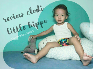 Product Review : Cloth Diaper Little Hippo