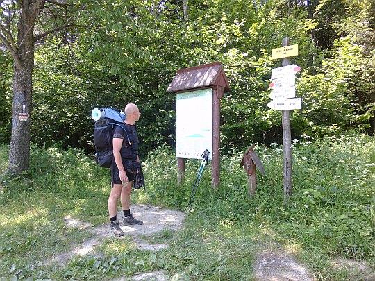 Przełęcz Hałbowska (540 m n.p.m.).