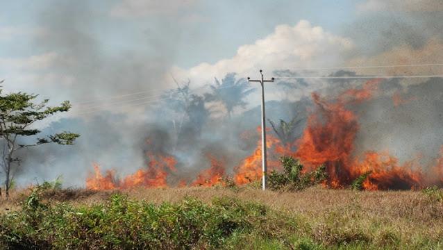Focos de queimadas aumentam em Porto Velho e situação preocupa