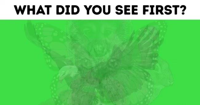 Hewan apa yang pertama kali kalian lihat