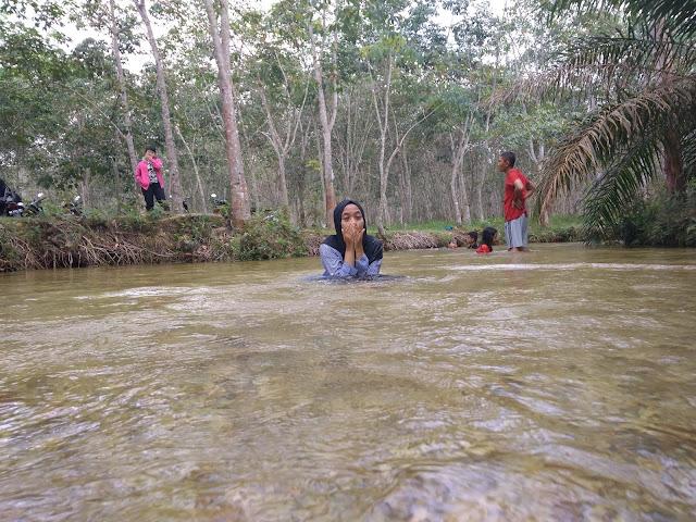 suasana sungai hijau