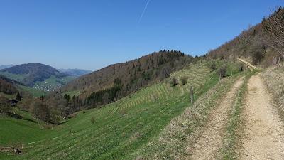 Weg oberhalb Gwidem mit Blick auf Langenbruck