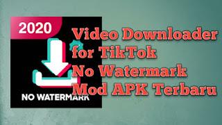Video Downloader for TikTok - No Watermark Mod APK