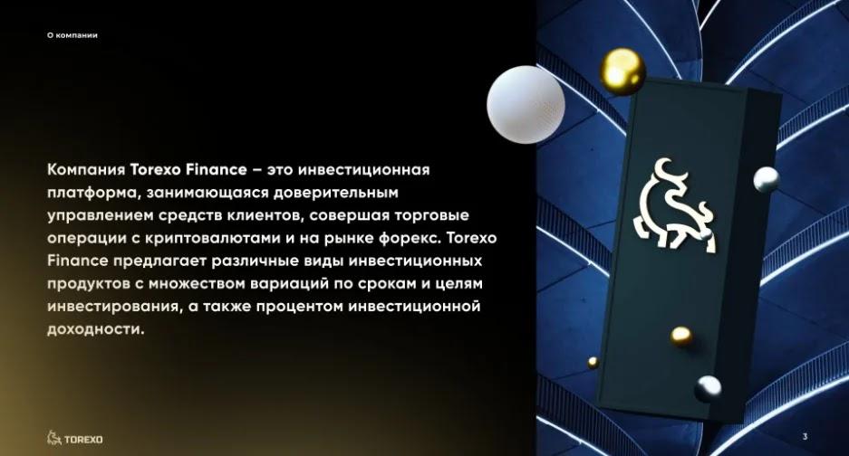 Обзор проекта Torexo