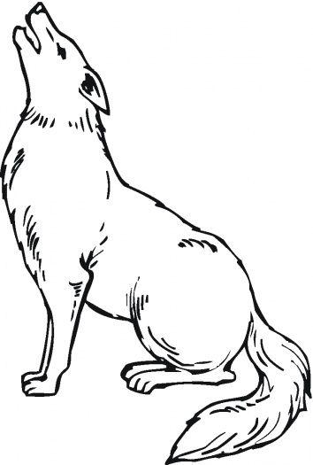Tranh tô màu con chó sói đang hú
