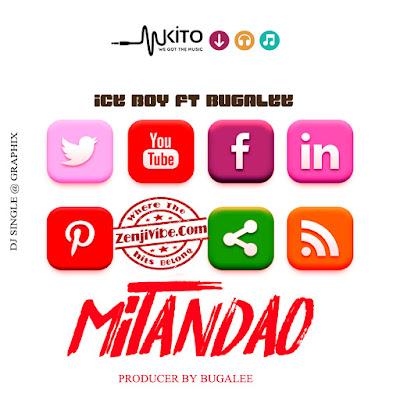 Ice Boy X Bugalee - Mitandao