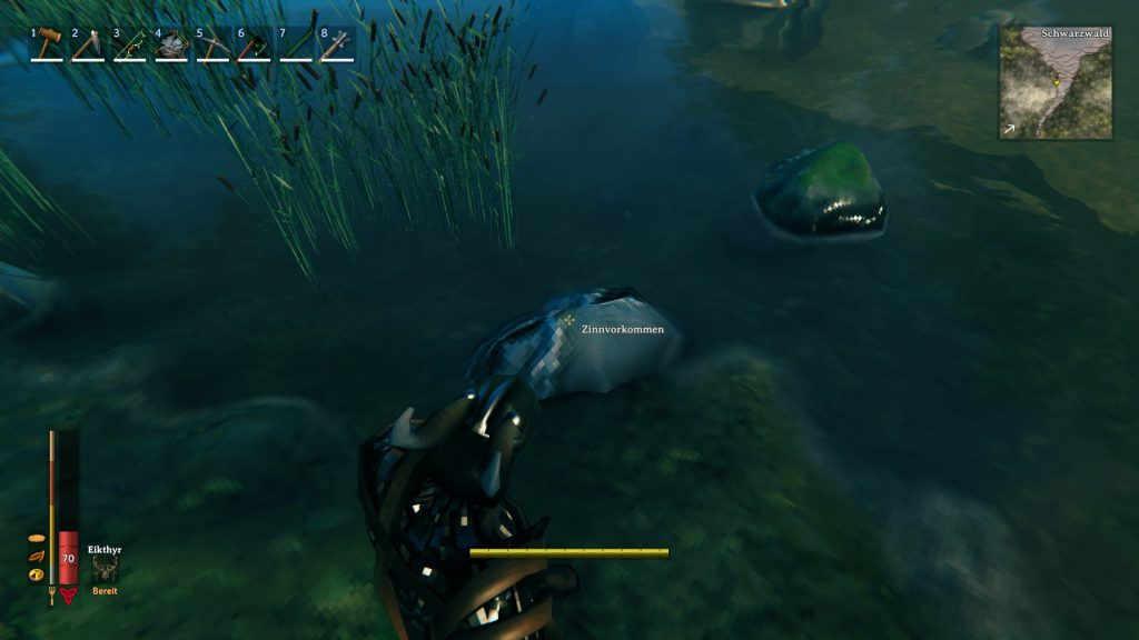 You can find tin on the banks of the Black Forest biome.