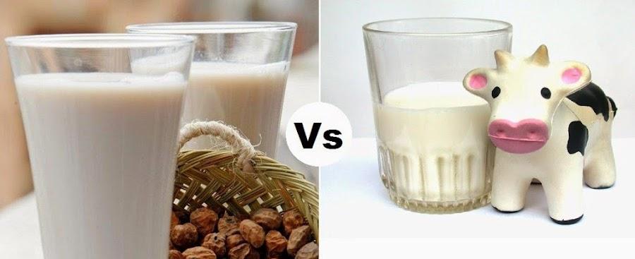 leche vegetal para adelgazar