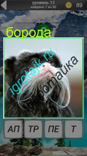 у обезьяны имеется белая борода в игре 600 забавных картинок на 12 уровне