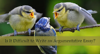 Write an Argumentative Essay