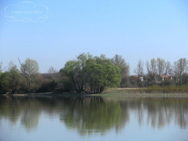 берег Дуная, венгрия, хюгге, рустик, блоги о жизни за границей, ваби саби, о жизни в венгрии, русские в венгрии