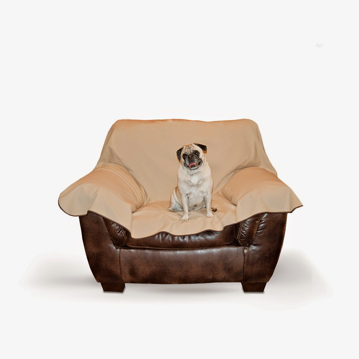 leather pet sofa le corbusier bed dog couch