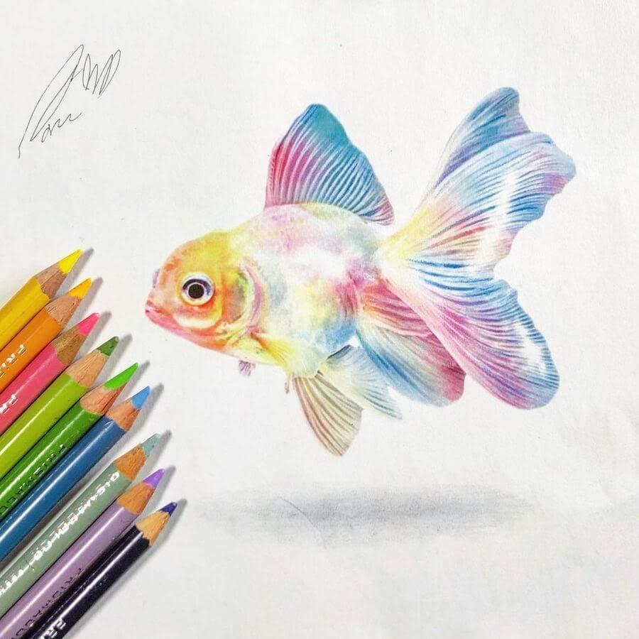 09-Multi-colored-fish-Guanyu-www-designstack-co
