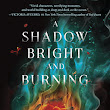 Book Review: A Shadow Bright and Burning (Kingdom on Fire, #1) by Jessica Cluess