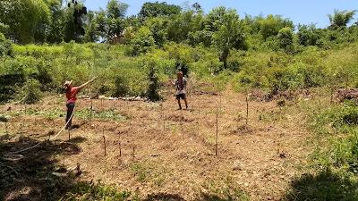 Garden design, permaculture, Livingston Guatemala, swales, contour, regenerative agriculture
