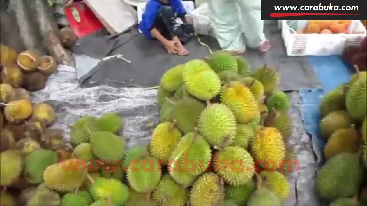 Tips Cara Memilih Durian Matang dan Manis 12