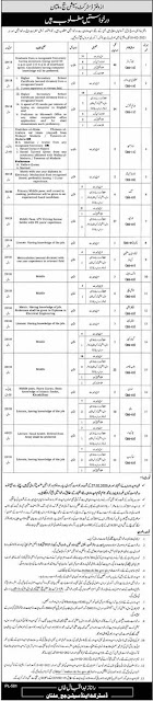 District and Session Court Multan Jobs 2021 for BPS-16 to BPS-03 Advertisement
