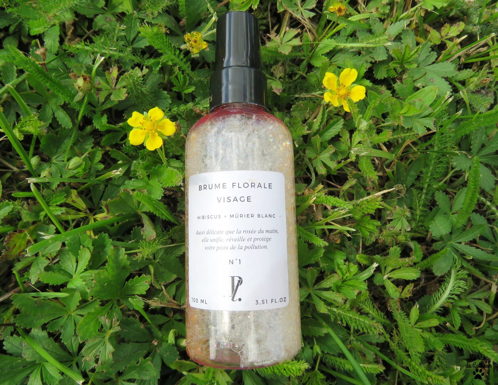 Brume Florale Visage - Hibiscus Mûrier Blanc - Prescription Lab