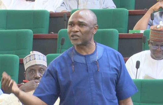 Twitter Ban: PDP Reps Vow To Drag FG To Court