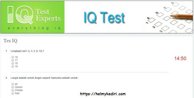 7. Intelligence Quotient(IQ) Test Experts