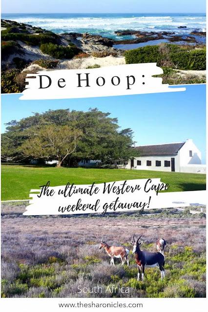 Pin: De Hoop: The ultimate Western Cape weekend getaway