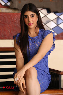 Actress Aditi Singh  Pictures in Short Dress at Movie Interview  0135.JPG