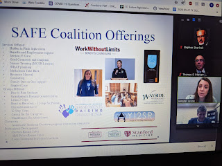 screen capture during the SAFE Coalition presentation