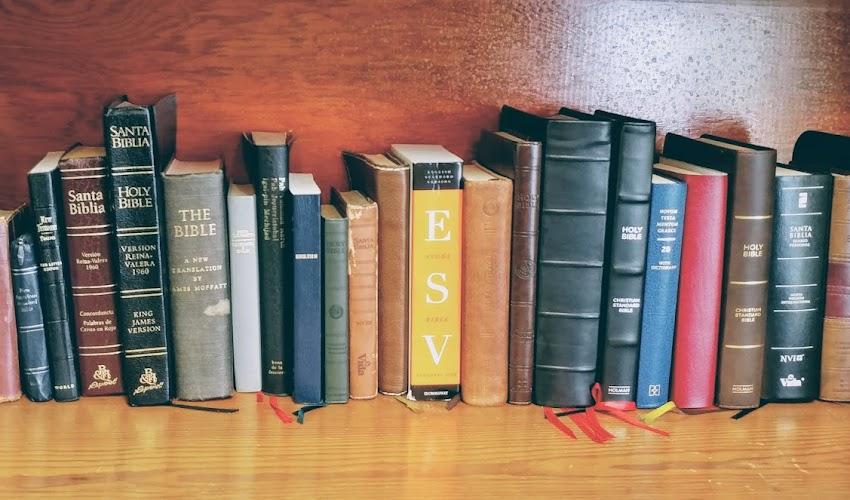 This is My Bible: Bibles of Grade School