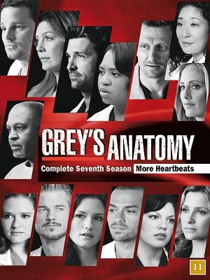 Baixar Grey's Anatomy 7ª Temporada Dublado