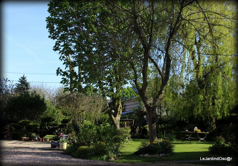 Le jardin d 39 oscar petit tour au jardin - Petit jardin culinary arts tours ...