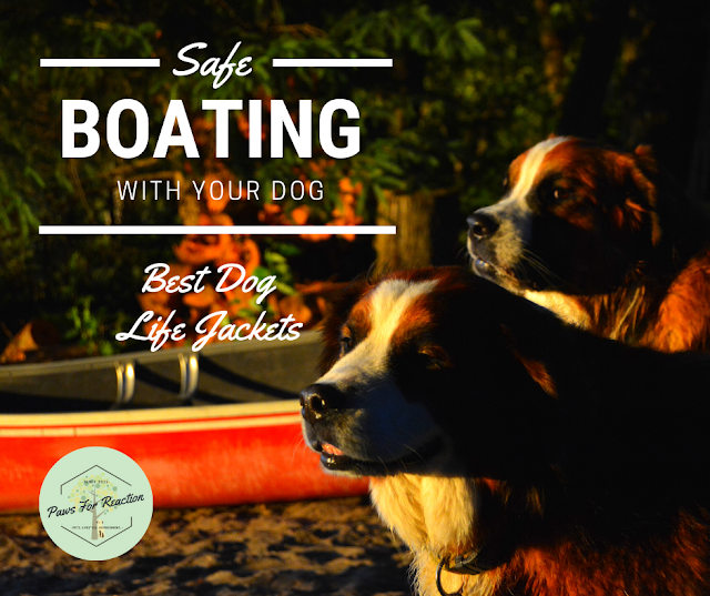 Dog PFD: The best life preservers and life jackets for dogs