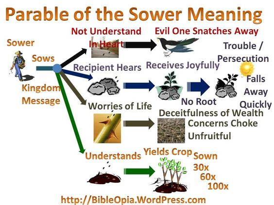 The Parable of the Sower (Luke 8:5-15)