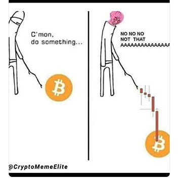Maybe don't poke at the bitcoin market like that! (Source: @CryptoMemeElite)