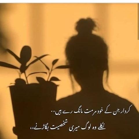 friendship Urdu poetry status