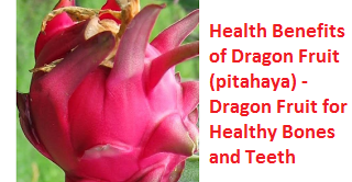 Health Benefits of Dragon Fruit (pitahaya) - Dragon Fruit for Healthy Bones and Teeth
