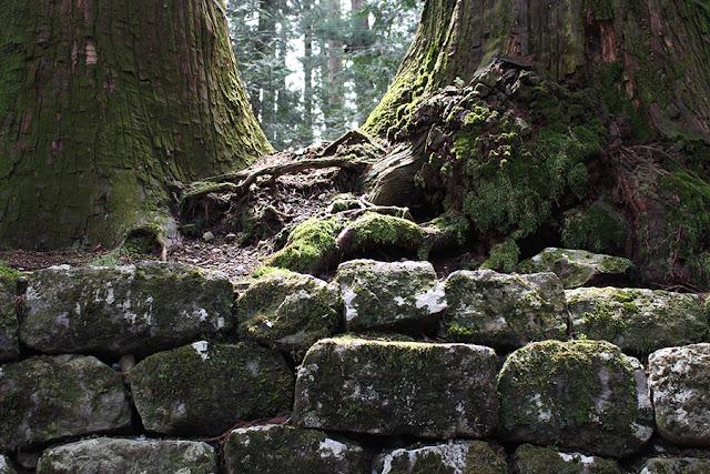 sur le chemin du temple - Nikko, Japon
