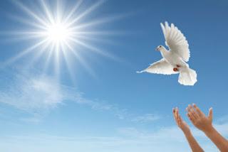 Mensageiros da Paz
