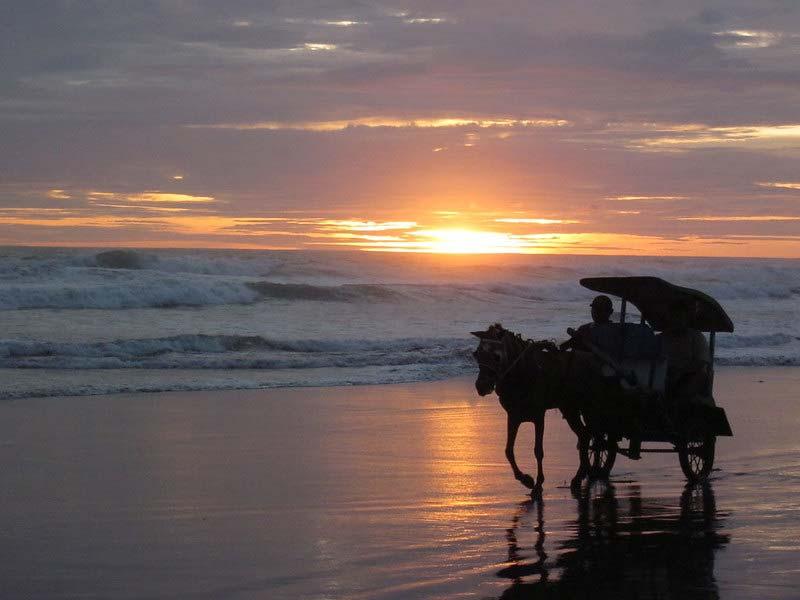 Fasilitas Wisata di Pantai Parangtritis Jogja