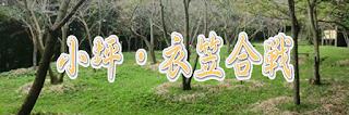 小坪・衣笠合戦