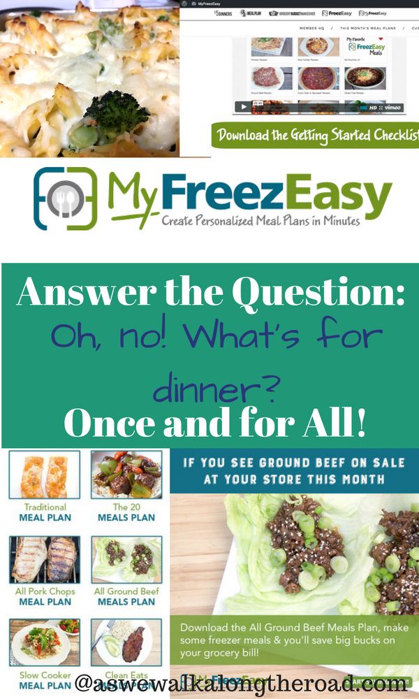 MyFreezEasy meal planning program