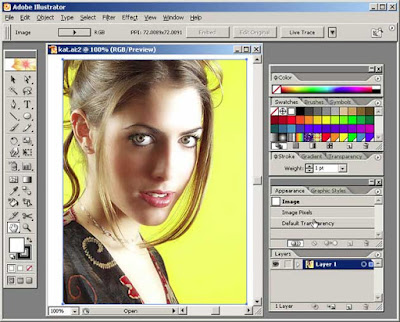 adobe illustrator cs5 free  full version with crack for windows xp