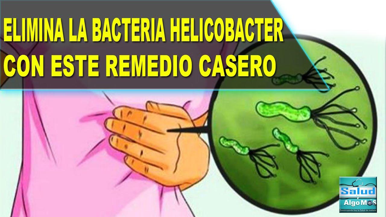 Remedios caseros para la bacteria helicobacter pylori