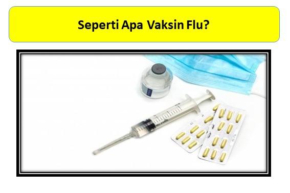 Seperti Apa Vaksin Flu?